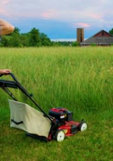 Особенности выбора газонокосилки: рекомендации эксперта