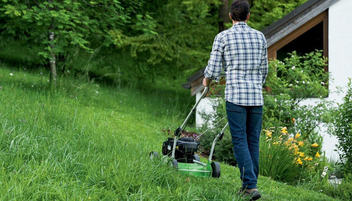 Какую лучше купить газонокосилку для дачи?