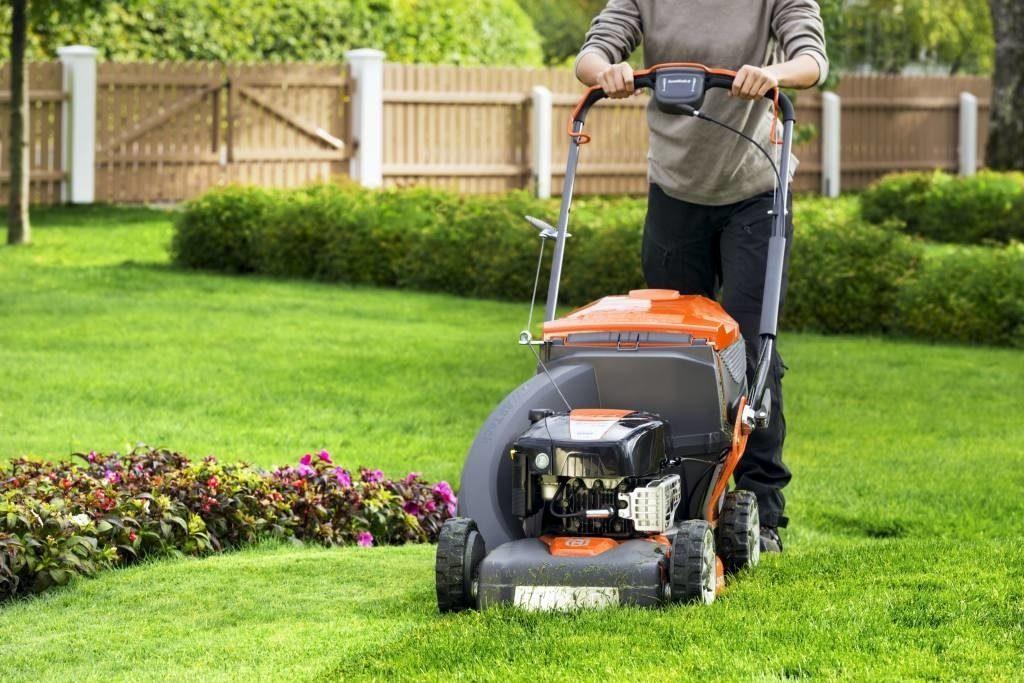 Как выбрать недорогую и надежную газонокосилку?