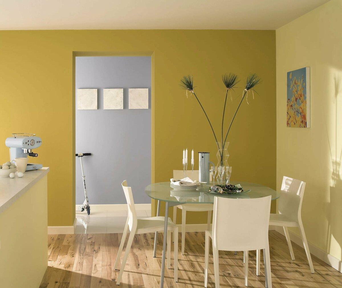 Как выбрать краску для стен и потолка :: инфониак