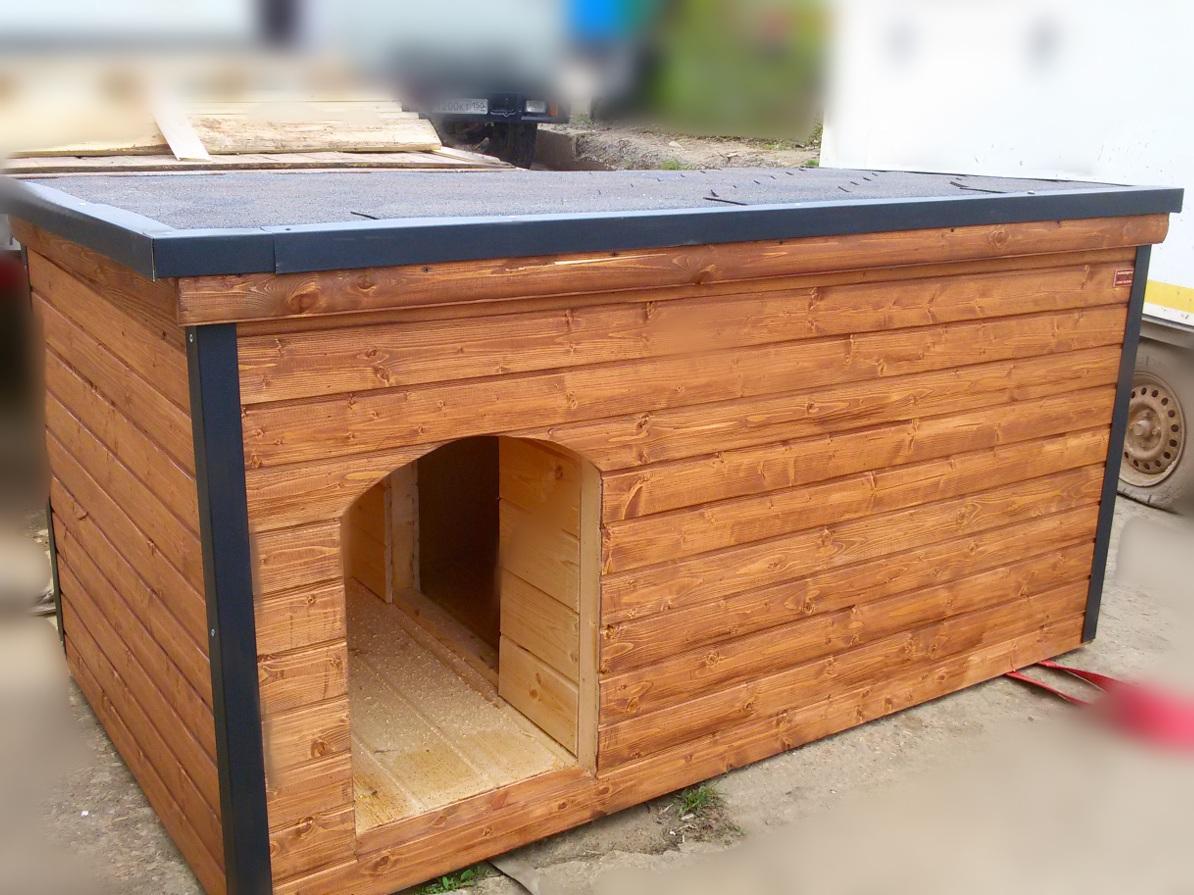 Будки для собак (52 фото): особенности рубленной собачьей конуры, красивые большие будки с вольером, маленькие деревянные будки с навесом для щенков