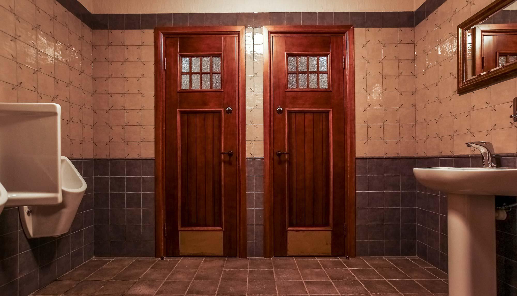 Как выбрать двери в ванную и туалет?