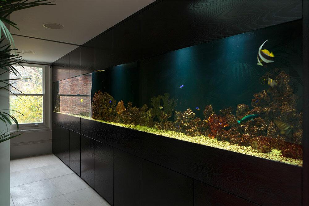 Аквариумы в интерьере — удивительные встроенные квартиры для рыбок + 98 фото