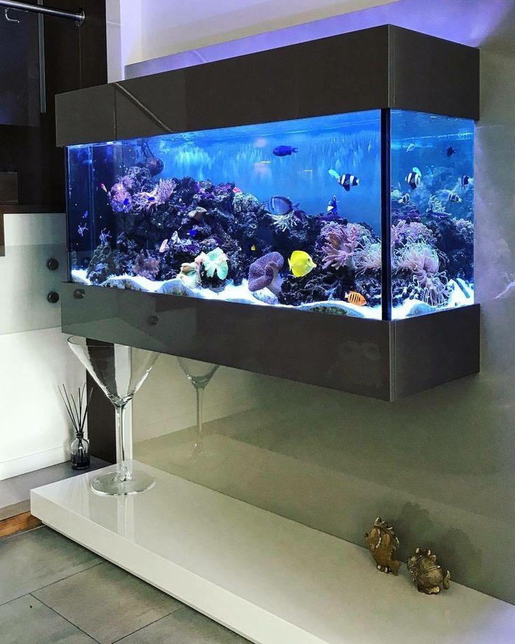 Как создать оригинальный дизайн аквариума?