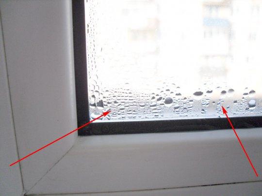 Почему запотевают пластиковые окна внутри: стеклопакета, внутри, между стекол, дома, квартиры, помещения, как с этим бороться | ремонтсами! | информационный портал