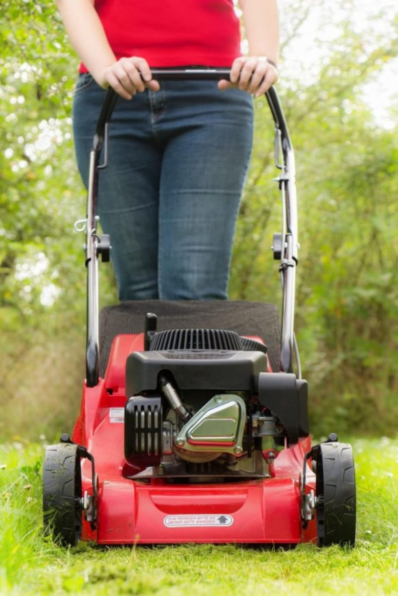 16 лучших газонокосилок - рейтинг 2020