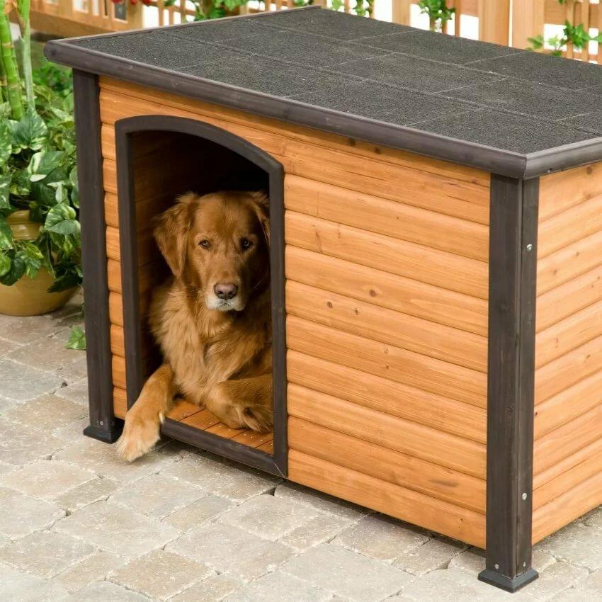 Порадуем любимого питомца! как сделать будку для собаки своими руками