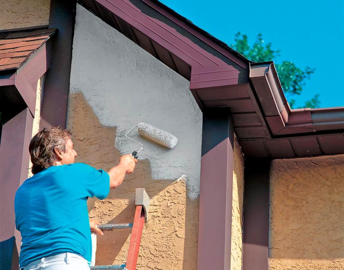 Виды красок, характеристики, назначение. краски для внутренних и наружных работ