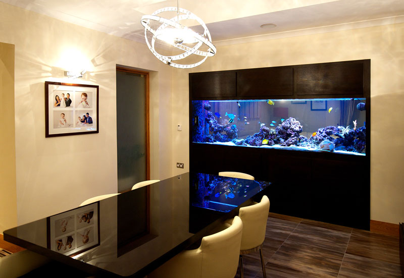 Аквариум в интерьере квартиры — 35 фото дизайнерских идей