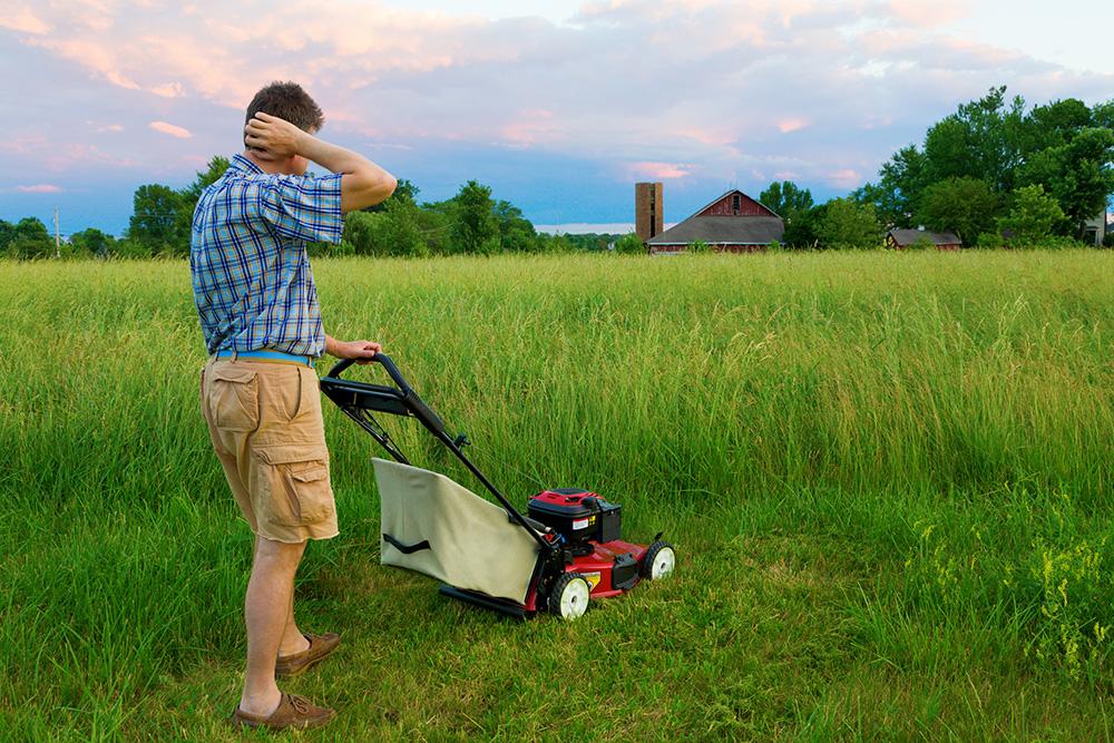 Механическая газонокосилка: ручная барабанная косилка для травы и другие модели, рейтинг лучших газонокосилок. как она работает? отзывы