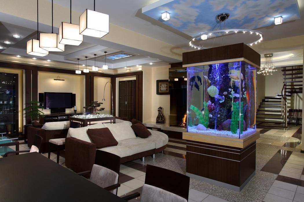 Аквариум в стене между комнатами: виды и дизайн сосуда в интерьере помещения