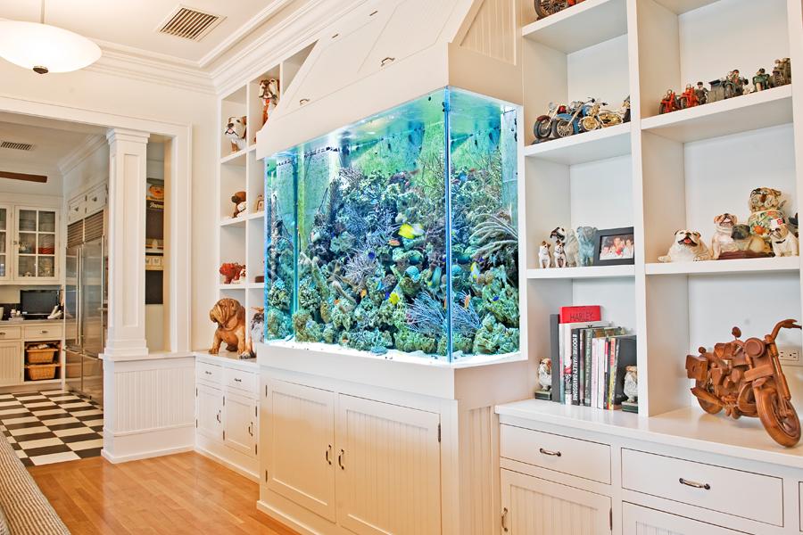 Аквариум встроенный в стену в вашем интерьере