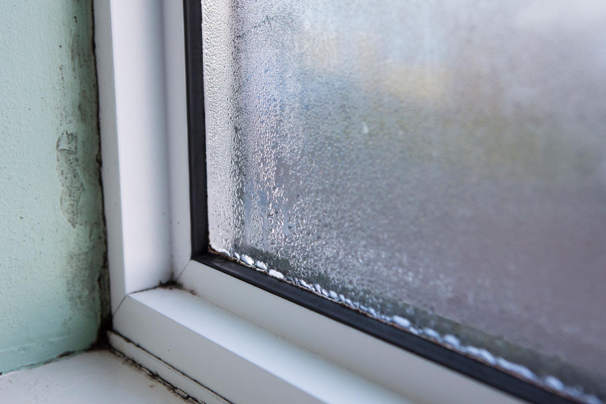 Почему в пластиковых окнах между стеклами потеют. почему потеют пластиковые окна между стеклами: что делать для устранения конденсата