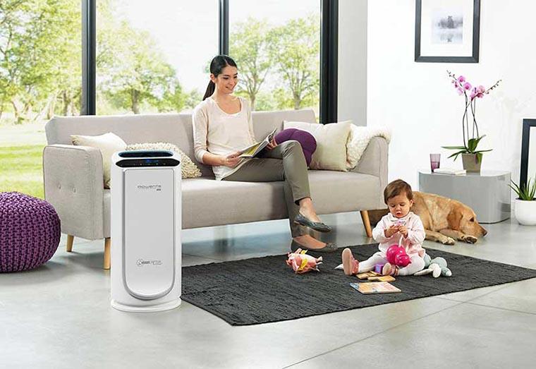 Очиститель воздуха для квартиры: какой выбрать? виды и характеристики