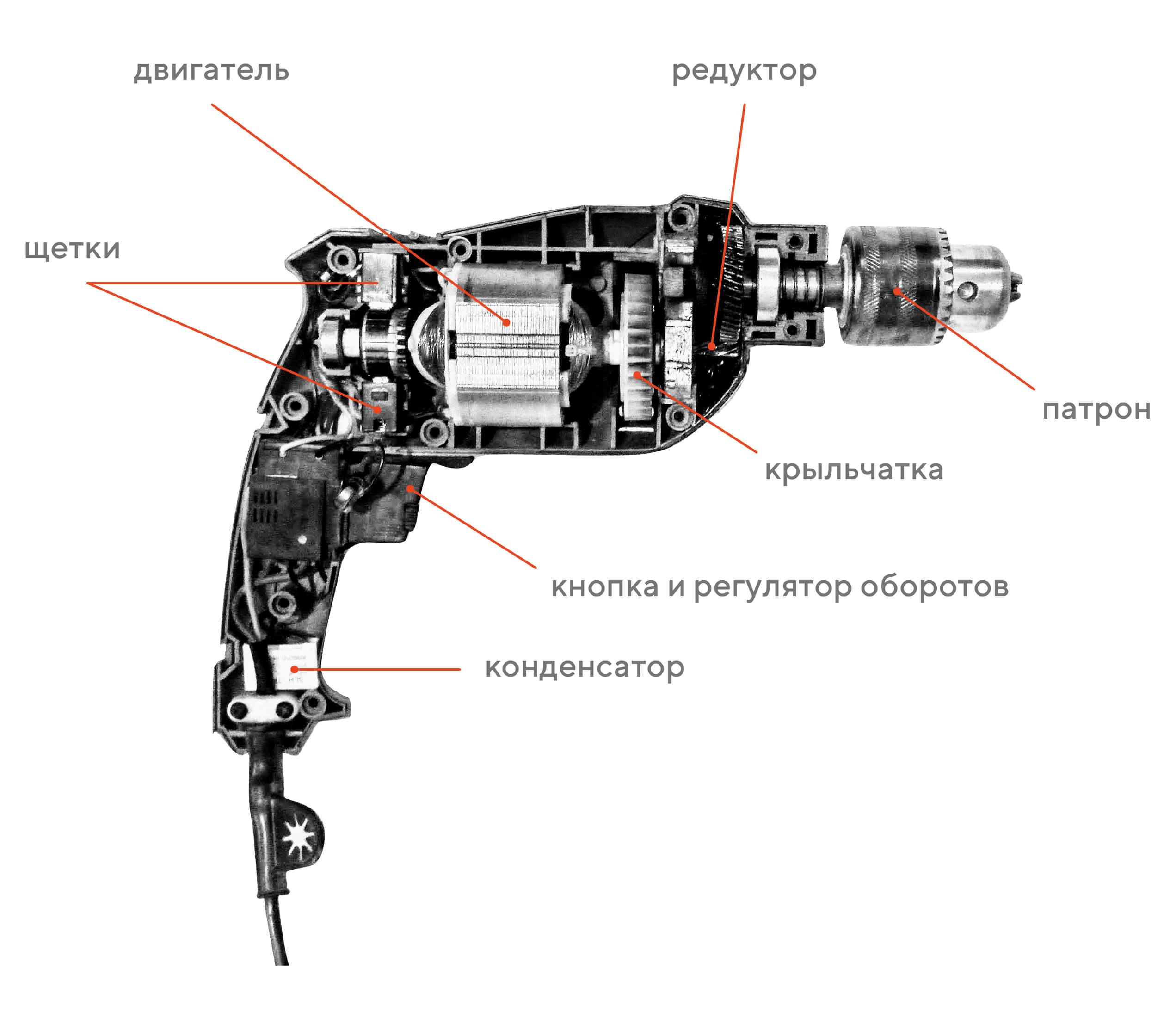 Как выбрать электрическую дрель, чем она отличается от перфоратора