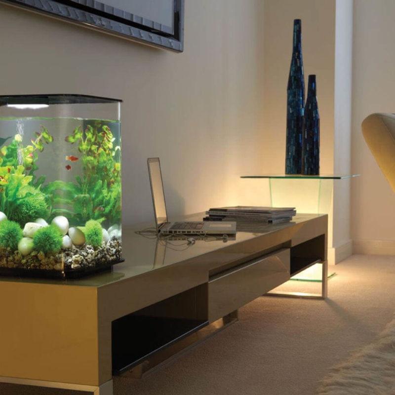 75 оригинальных идей дизайна аквариума с фото