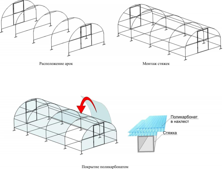 Как выбрать поликарбонат для теплицы: вся суть
