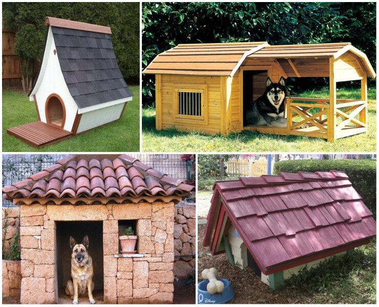 Как построить теплую и надежную конуру для собаки