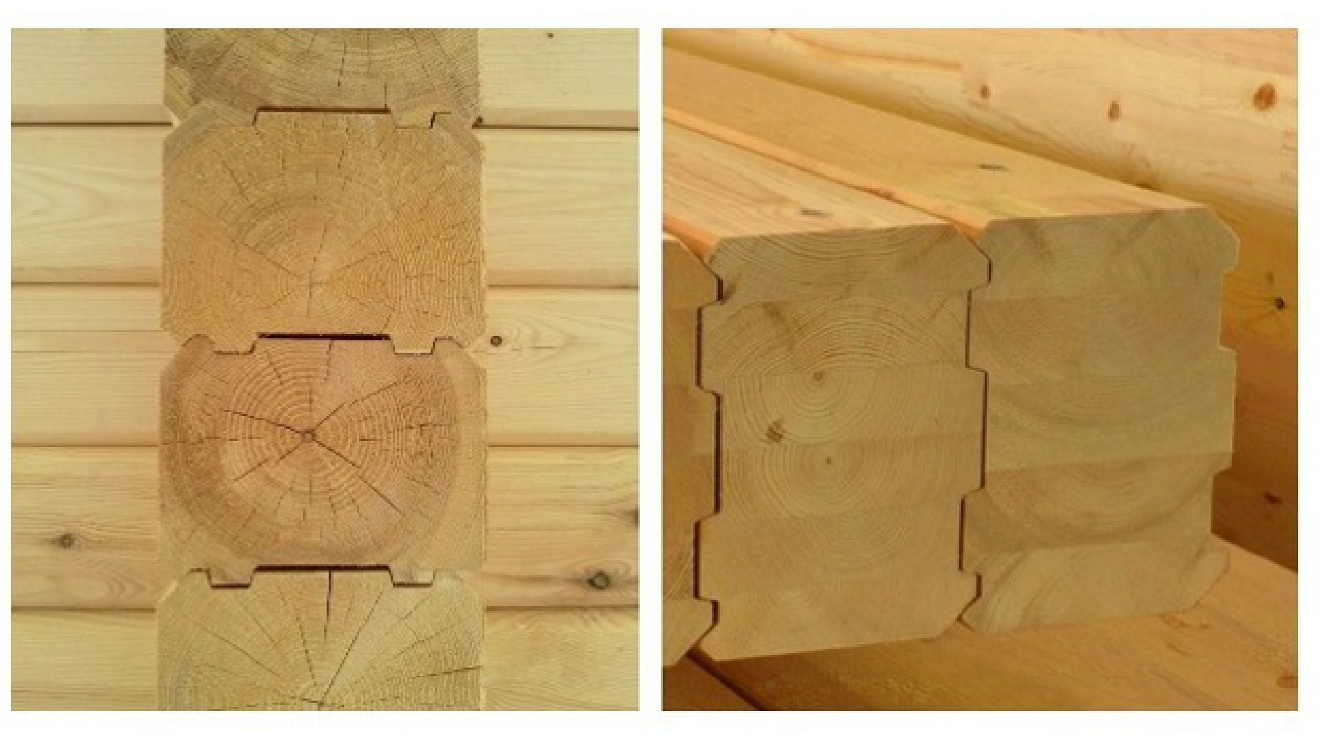 Дома из дерева – какие лучше?